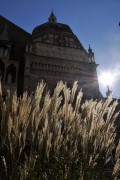 piazza vecchia verde_Mangili.jpg