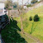 Cortina di porta S.Lorenzo, fianco nord e condotta acque